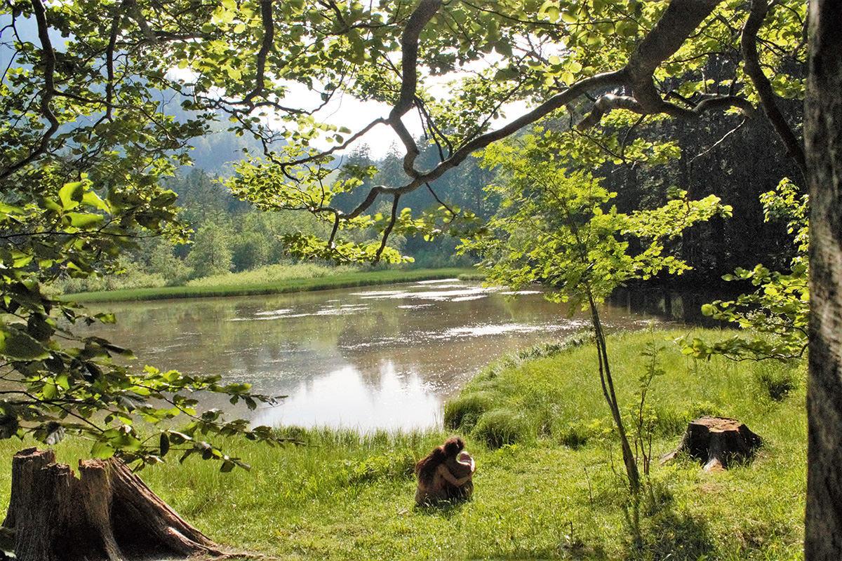 Idyllische Waldlandschaft mit LIchtung See und Liebespaar